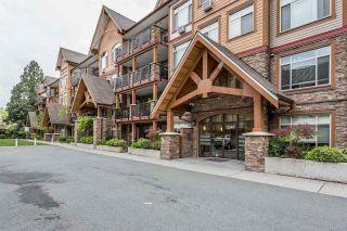 "Photo 1: 313 12565 190A Street in Pitt Meadows: Mid Meadows Condo for sale in ""CEDAR DOWNS"" : MLS®# R2265640"