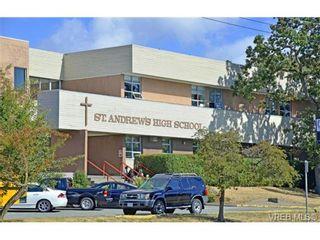Photo 11: 4041 Nelthorpe St in VICTORIA: SE High Quadra Land for sale (Saanich East)  : MLS®# 685817