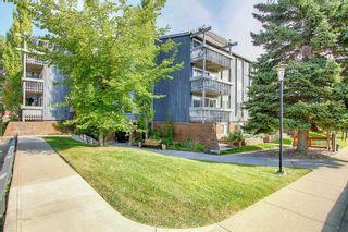 Photo 33: 327 820 89 Avenue SW in Calgary: Haysboro Apartment for sale : MLS®# A1145772