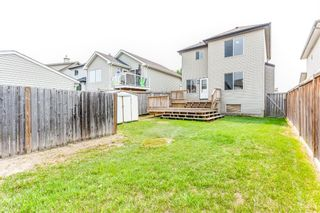 Photo 16: 210 Copperfield Mews SE in Calgary: Copperfield Detached for sale : MLS®# A1128116
