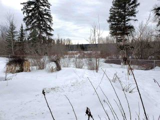 Photo 25: 3435 ISLAND PARK Drive in Prince George: Miworth House for sale (PG Rural West (Zone 77))  : MLS®# R2545788