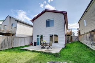 Photo 42: 135 COVEWOOD Close NE in Calgary: Coventry Hills Detached for sale : MLS®# A1023172