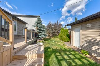 Photo 47: 14224 95 Avenue in Edmonton: Zone 10 House for sale : MLS®# E4259113