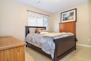 Photo 13: 9126 212A Place in Langley: Walnut Grove House for sale : MLS®# R2347718