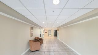 """Photo 18: 113 11595 FRASER Street in Maple Ridge: East Central Condo for sale in """"BRICKWOOD PLACE"""" : MLS®# R2607615"""