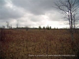 Photo 6: 2489 Concession Road 3 Road in Ramara: Brechin Property for sale : MLS®# X3371303