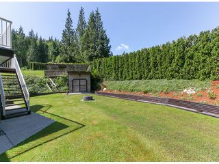"""Photo 19: 27111 122ND Avenue in Maple Ridge: Northeast House for sale in """"ROTHSAY HEIGHTS"""" : MLS®# V1067734"""