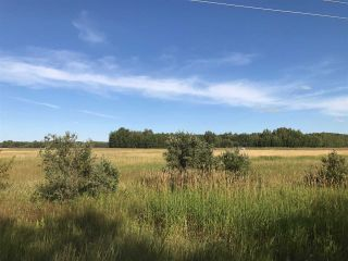 Photo 22: 57525 Rg Rd 214: Rural Sturgeon County Rural Land/Vacant Lot for sale : MLS®# E4266088