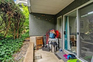 """Photo 7: 1 5700 200 Street in Langley: Langley City Condo for sale in """"LANGLEY VILLAGE"""" : MLS®# R2594360"""