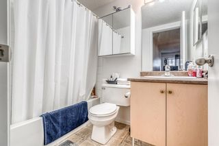 Photo 14: 417 1717 60 Street SE in Calgary: Red Carpet Apartment for sale : MLS®# A1133499