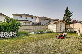 Photo 47: 766 Coral Springs Boulevard NE in Calgary: Coral Springs Detached for sale : MLS®# A1136272