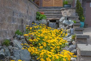 Photo 17: 5064 Lochside Dr in : SE Cordova Bay House for sale (Saanich East)  : MLS®# 873682