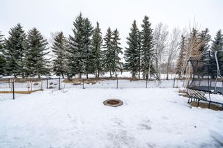 Photo 47: 464 Crystal Green Manor: Okotoks Detached for sale : MLS®# A1074152