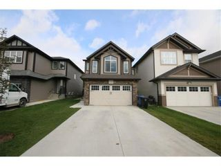 Photo 35: 249 Skyview Shores Manor NE in Calgary: Skyview Ranch Detached for sale : MLS®# A1040770