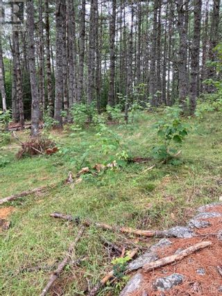 Photo 2: Lot 40C Labelle Road in Labelle: Vacant Land for sale : MLS®# 202120719