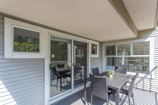 "Photo 18: 203 20556 113 Avenue in Maple Ridge: Southwest Maple Ridge Condo for sale in ""THE MAPLES"" : MLS®# R2189933"