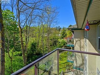 Photo 13: 310 1485 Garnet Rd in VICTORIA: SE Cedar Hill Condo for sale (Saanich East)  : MLS®# 757974