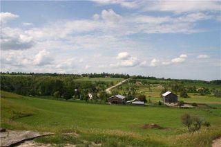 Photo 9: 568265 9 Sdrd in Mulmur: Rural Mulmur House (Bungalow) for sale : MLS®# X3900081