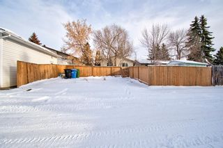 Photo 24: 180 Maitland Place NE in Calgary: Marlborough Park Detached for sale : MLS®# A1048392