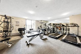 Photo 18: 604 30 Mchugh Court NE in Calgary: Mayland Heights Apartment for sale : MLS®# A1152628