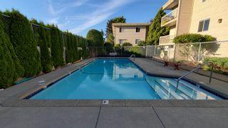 """Photo 12: 120 11806 88 Avenue in Delta: Annieville Condo for sale in """"SUN GOD VILLA"""" (N. Delta)  : MLS®# R2616862"""