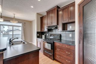 Photo 5: 1571 COPPERFIELD Boulevard SE in Calgary: Copperfield Detached for sale : MLS®# A1107569