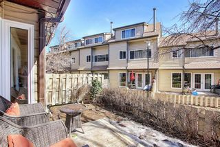 Photo 28: 4 95 Grier Place NE in Calgary: Greenview Row/Townhouse for sale : MLS®# A1080307