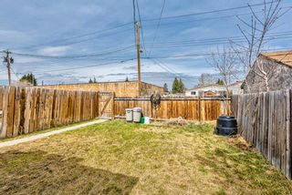 Photo 31: 114 Dovertree Place SE in Calgary: Dover Semi Detached for sale : MLS®# A1071722