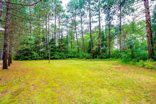 Photo 18: LK283 Summer Resort Location in Boys Township: Retail for sale : MLS®# TB212151