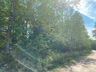 Photo 7: Lot Manse Road in Kenzieville: 108-Rural Pictou County Vacant Land for sale (Northern Region)  : MLS®# 202122852