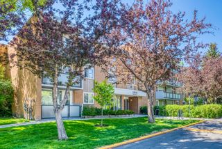 Main Photo: 327 1616 8 Avenue NW in Calgary: Hounsfield Heights/Briar Hill Apartment for sale : MLS®# A1155181