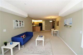 Photo 7: 234 9008 99 Avenue in Edmonton: Zone 13 Condo for sale : MLS®# E4256803