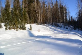 Photo 15: LOT A W 16 Highway in Smithers: Smithers - Town Land for sale (Smithers And Area (Zone 54))  : MLS®# R2533470