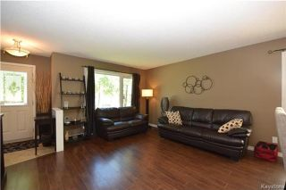 Photo 3: 107 Pinetree Crescent in Winnipeg: Riverbend Residential for sale (4E)  : MLS®# 1716061
