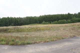Photo 7: 31 53214 RR13: Rural Parkland County Rural Land/Vacant Lot for sale : MLS®# E4266458