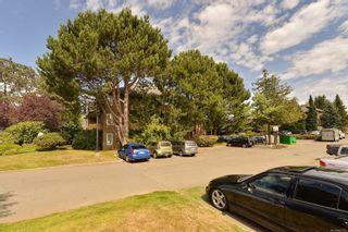 Photo 25: 306 3215 Alder St in : SE Quadra Condo for sale (Saanich East)  : MLS®# 863729