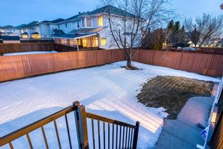 Photo 40: 232 Coral Shores Court NE in Calgary: Coral Springs Detached for sale : MLS®# A1081911