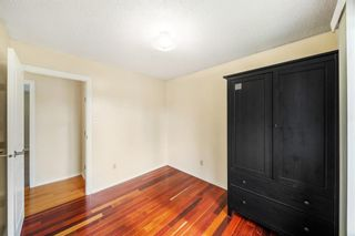 Photo 14: 3320 Dover Ridge Drive SE in Calgary: Dover Detached for sale : MLS®# A1141061