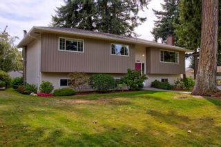 Photo 29: 2401 Wilcox Terr in : CS Tanner House for sale (Central Saanich)  : MLS®# 885075