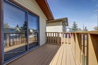 Photo 5: 165 Castlebrook Way NE in Calgary: Castleridge Semi Detached for sale : MLS®# A1107491