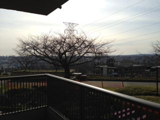 """Photo 2: #107 3740 ALBERT ST in Burnaby: Vancouver Heights Condo for sale in """"BOUNDARY VIEW"""" (Burnaby North)  : MLS®# V995079"""