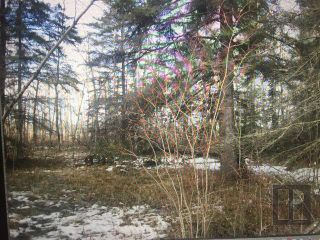 Photo 10: 17084 Camp Morton Road in Gimli Rm: Camp Morton Residential for sale (R26)  : MLS®# 1827446