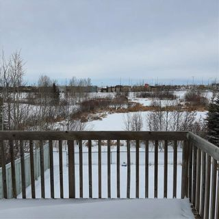 Photo 22: 1812 37C Avenue in Edmonton: Zone 30 House for sale : MLS®# E4225424