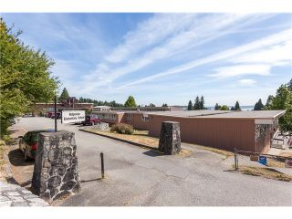 Photo 19: 1246 Kings Av in West Vancouver: Ambleside House for sale : MLS®# V1129618