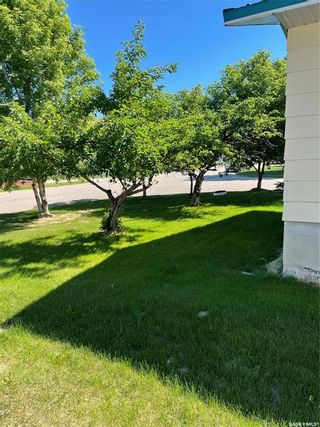 Photo 6: 701 6th Avenue in Hudson Bay: Residential for sale : MLS®# SK861176