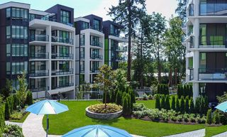 """Photo 9: 22 3483 ROSS Drive in Vancouver: University VW Townhouse for sale in """"POLYGON NOBEL PARK RESIDENCES"""" (Vancouver West)  : MLS®# R2532982"""