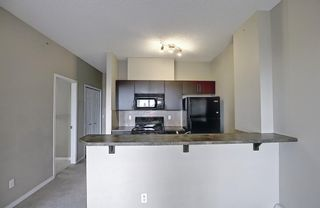 Photo 12: 405 1727 54 Street SE in Calgary: Penbrooke Meadows Apartment for sale : MLS®# A1120448