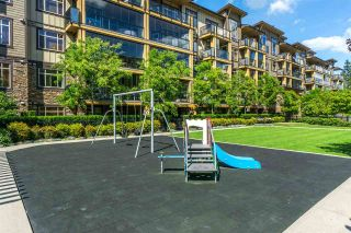 """Photo 19: 505 8258 207A Street in Langley: Willoughby Heights Condo for sale in """"Yorkson Creek - Walnut Ridge 3"""" : MLS®# R2299801"""