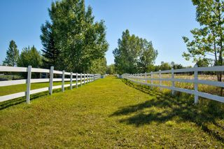 Photo 44: 17 Willowside Drive: Rural Foothills County Detached for sale : MLS®# A1141416