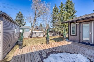 Photo 42: 10540 Waneta Crescent SE in Calgary: Willow Park Detached for sale : MLS®# A1085862